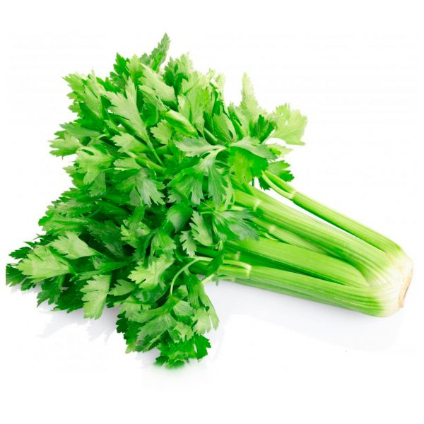 Fresh Organic Celery Vegetable