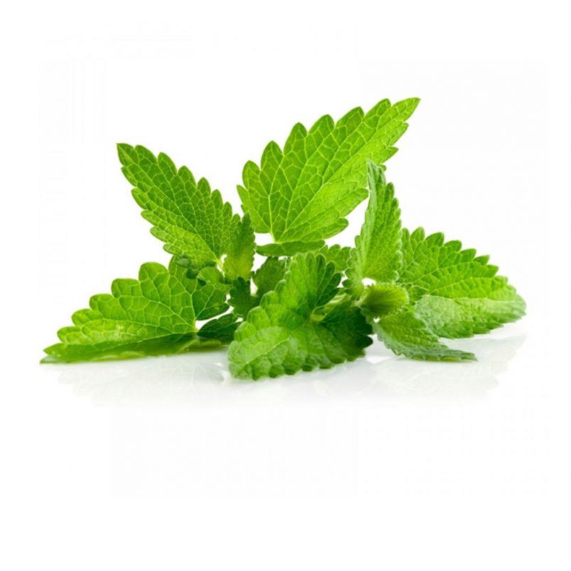 Fresh Organic Spearmint Herb