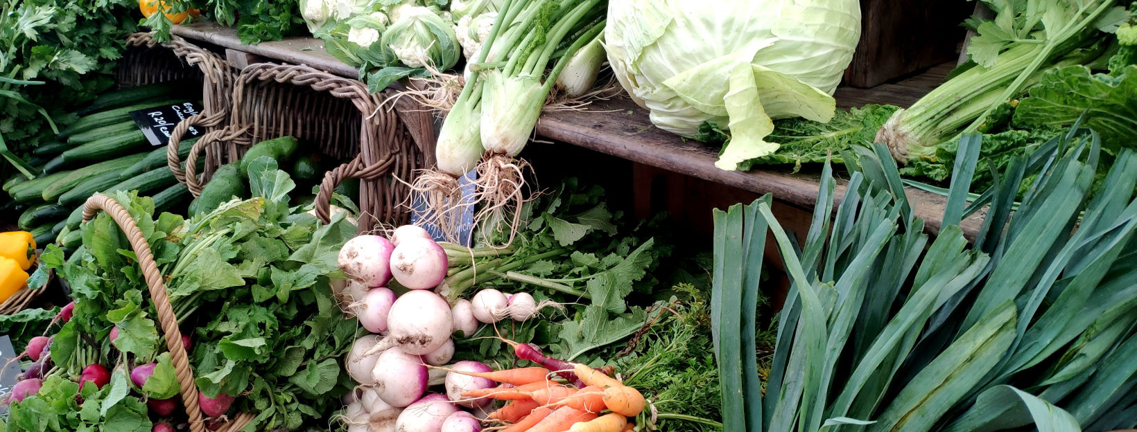 how to keep your organic veg fresh