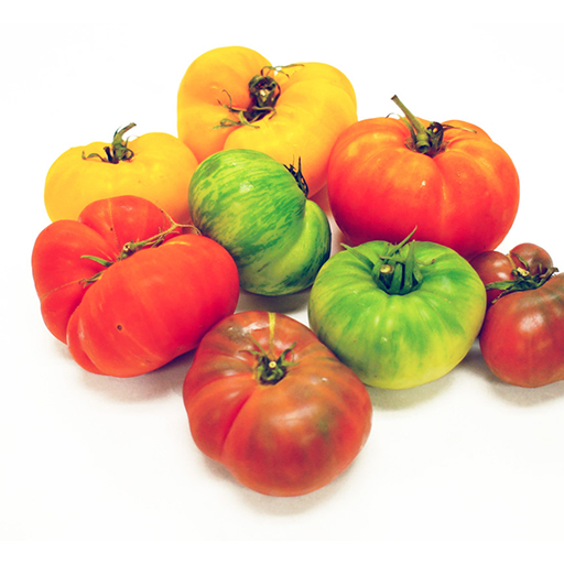 Fresh Organic Rainbow Heirloom Tomatoes Vegetable