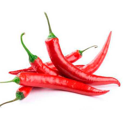 Fresh Organic Red Chillies Vegetable